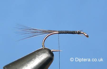 Tying the Black Gnat Wet Fly Step 2