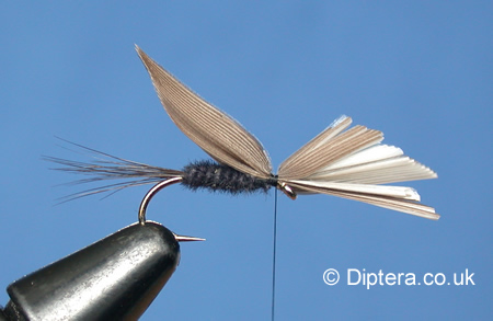 Tying the Black Gnat Wet Fly Step 6