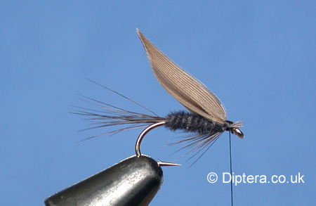 Tying the Black Gnat Wet Fly Step 7