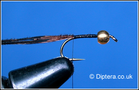 Tying the Depth Charged Corixa Step 2