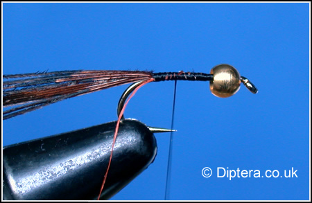 Tying the Depth Charged Corixa Step 3