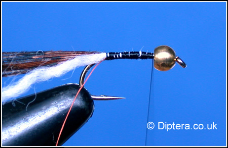 Tying the Depth Charged Corixa Step 4
