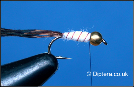 Tying the Depth Charged Corixa Step 6