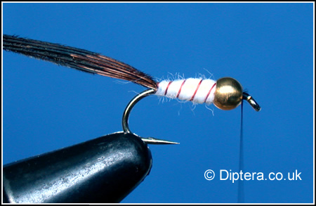 Tying the Depth Charged Corixa Step 7