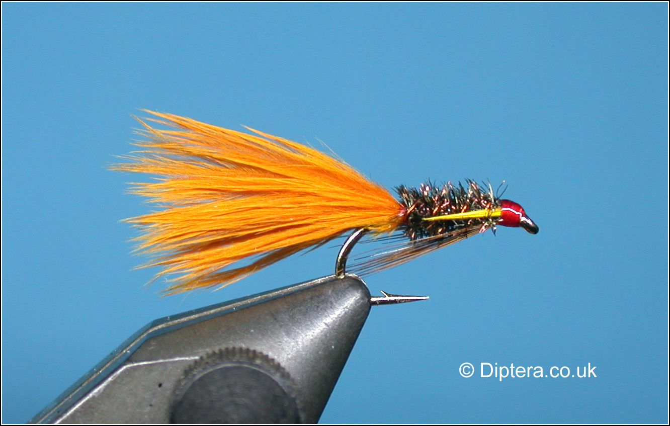Diawl Bach with Marabou Tail Fly Image