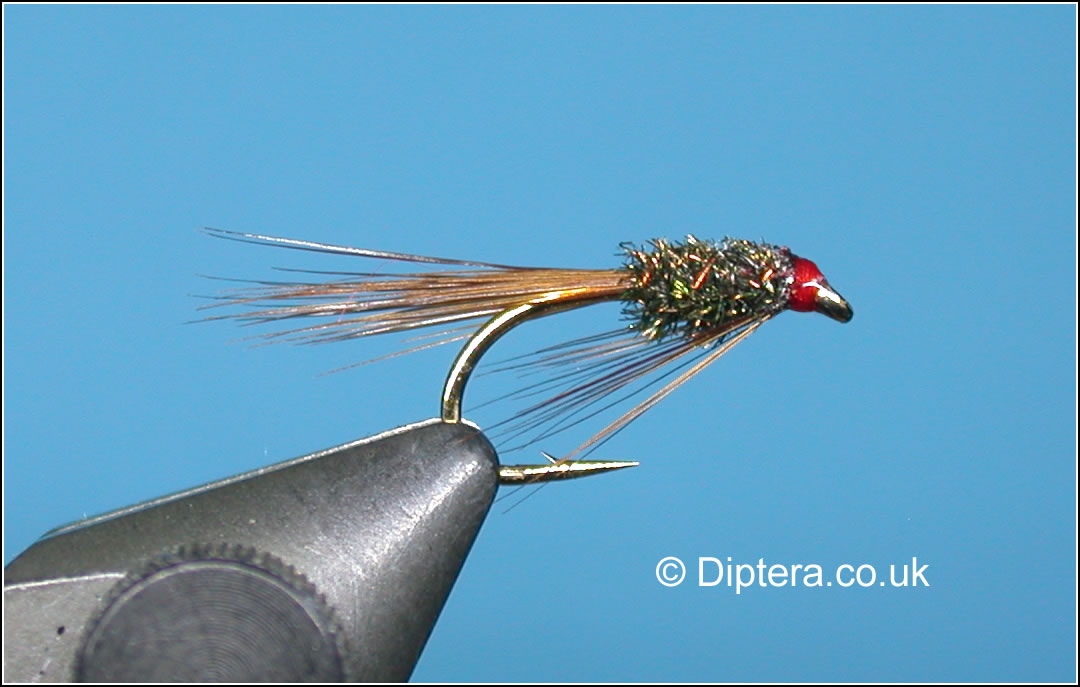 Short Red Head Diawl Bach Fly Image