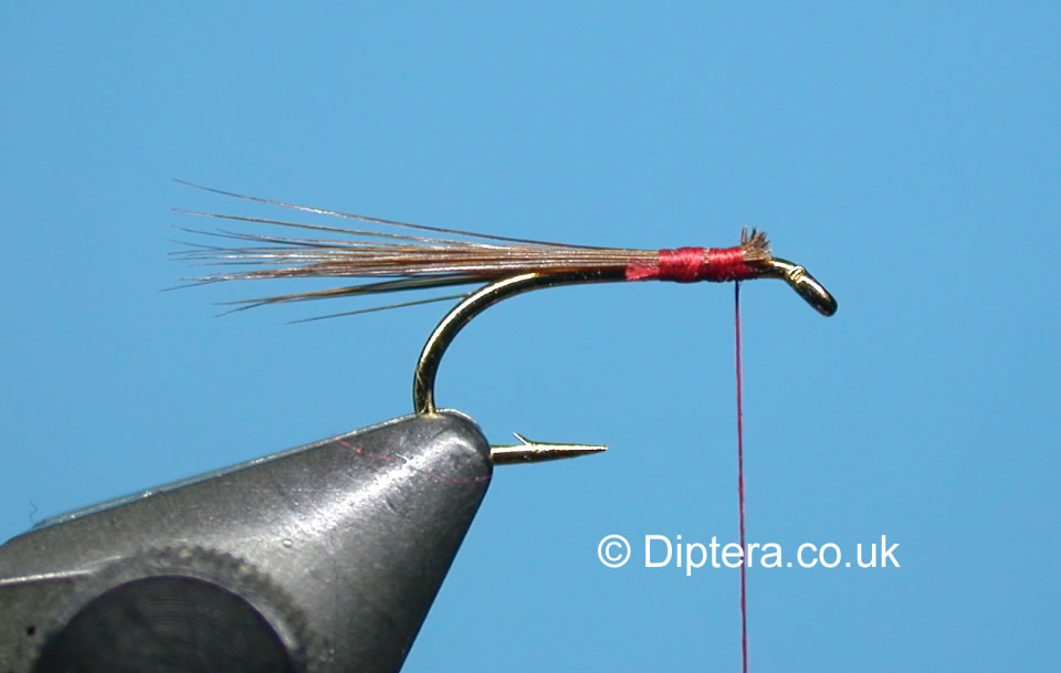 Tying the Short Version of the Red Head Diawl Bach Step 2