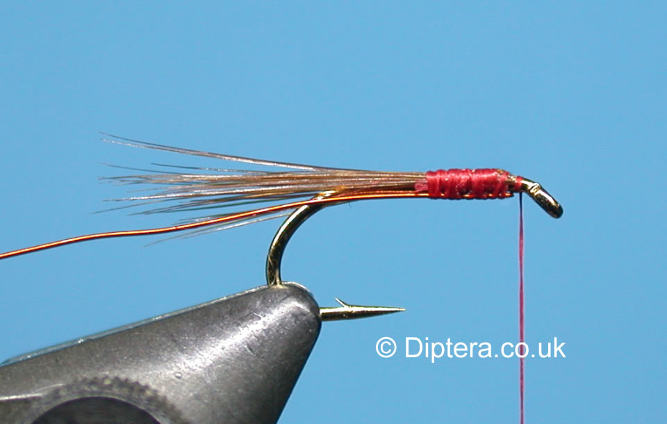 Tying the Short Version of the Red Head Diawl Bach Step 3