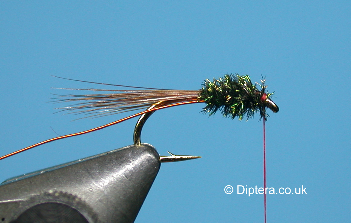 Tying the Short Version of the Red Head Diawl Bach Step 5