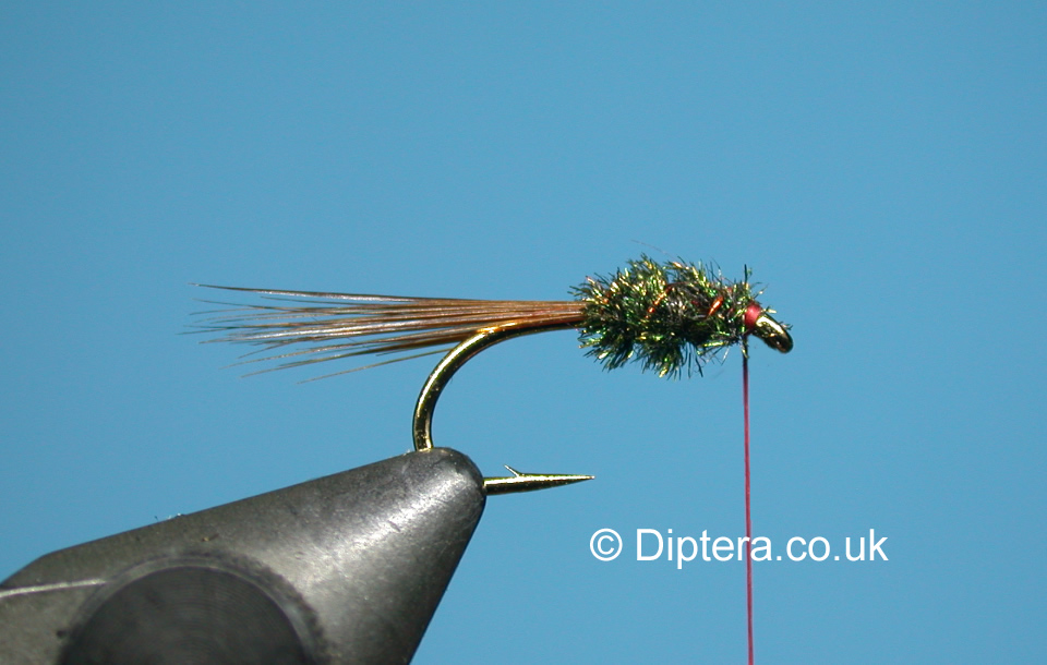 Tying the Short Version of the Red Head Diawl Bach Step 6
