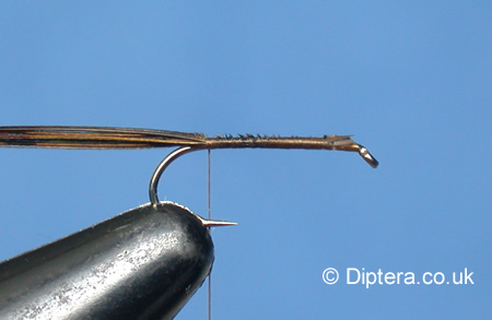 Tying the F-Fly Step 2