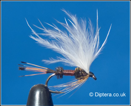 Royal Coachman with Marabou Wing Fly Image