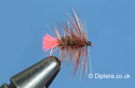 Tying the Palmered Red Tag Completed Fly